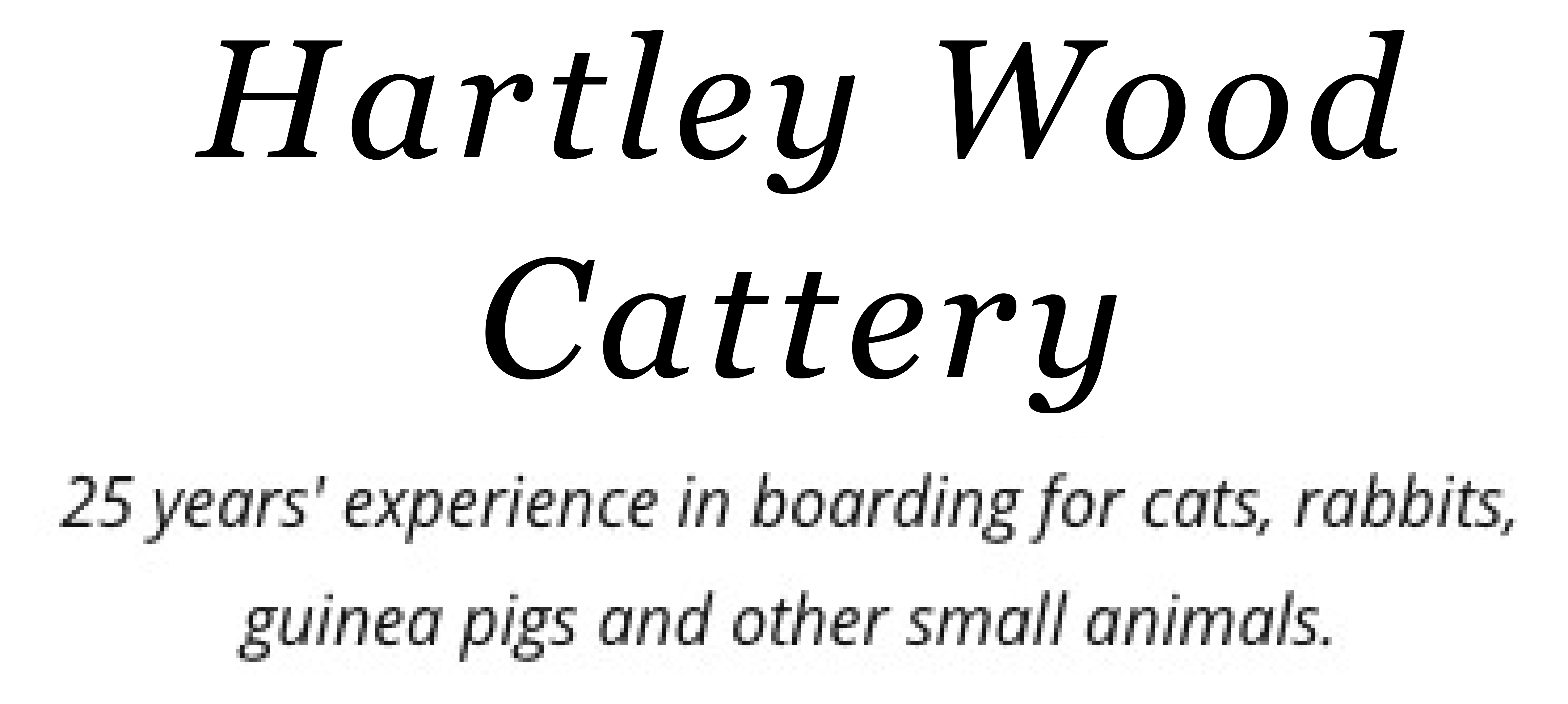 Hartleywood Cattery is an affordable cattery in Leeds